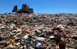 Francja zakazuje wyrzucania i marnotrastwo jedzenia