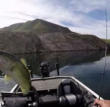 Wędkarstwo. Genialny sposób na nakręcenie fajnych rodzinnych wypraw