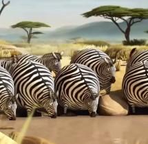 Humorystyczny film o naszym ulubionym jedzeniu i przestroga