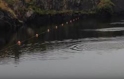 Rekord w puszczaniu kaczek na wodzie. Aż 88 kaczek.