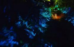 Rowerem przez las i góry oświetlone w różnych kolorach