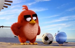 Angry Birds - nowy trailer - zapowiedź filmu