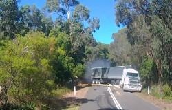 Rozpędzona ciężarówka i zwalone drzewo na jezdni w poprzek drogi