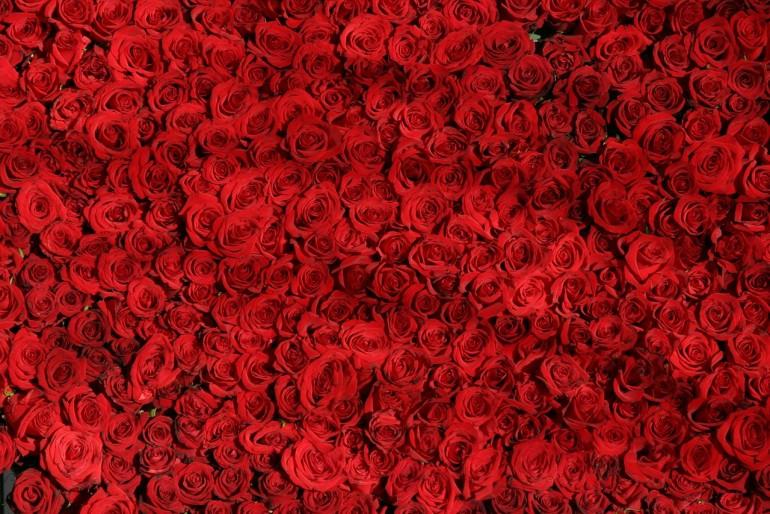 8 marca Dzień Kobiet, nie zapomnij o kwiatach.