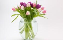 Co zrobić żeby kwiatki dłużej stały w wazonie?