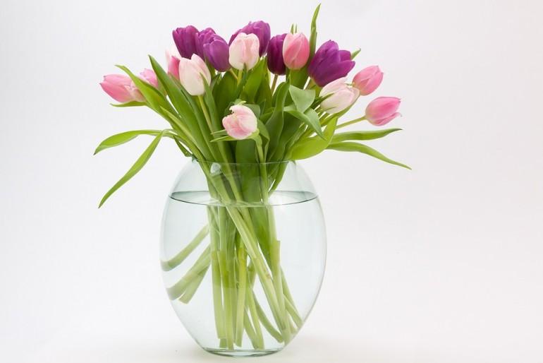 Co zrobić aby kwiatki dłużej stały?