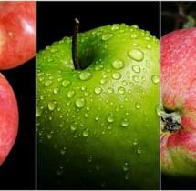 Jedzenie jabłek poprawia zdrowie